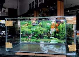 Jual aquarium 60x30x30 + background