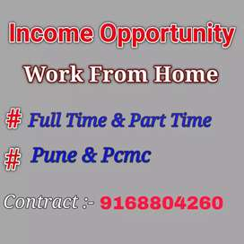 Online and offline official work. Income as per work