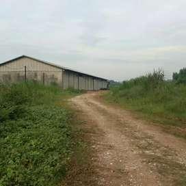 Gudang Murah di karawang timur luas tnh 86000 lb 6000 akses container