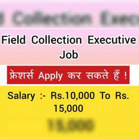 Field collection executive job limited seats available