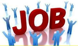 Freshers Accountant Male/Females Are Required In Companies Private Lim