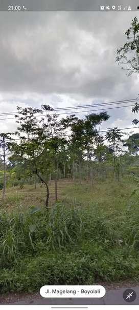 Dijual Tanah dekat dengan jalan raya Cepogo