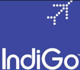 Indigo Airlines - Hiring For Ticketing Executive At Andaman Airport