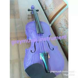 Biola greymusic seri 315