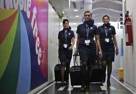 indigo airline job