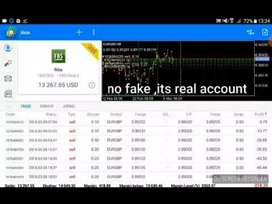 apk titip trading pasif income 20%/bln