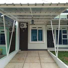 Canopy minimalis#067