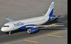 Indigo Jobs Looking for Job Indigo Airlines Ground Staff - Job Candida
