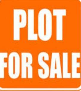 Plot for sale in baad for 1200000