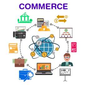 Classes for commerce subjects from plus one  to PG level