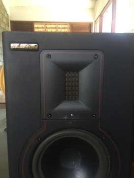 Samson Rubicon R6A speaker flat