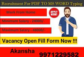 Great Income With Home Based E- Typing Work (PDF to MS WORD )