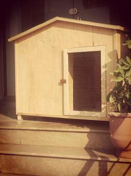 Dog house/kennels available for sale