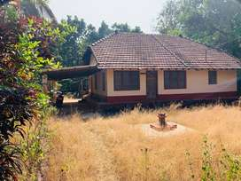 4.5 Acre land for sale in Belvai, Mangalore. price Negotiable.