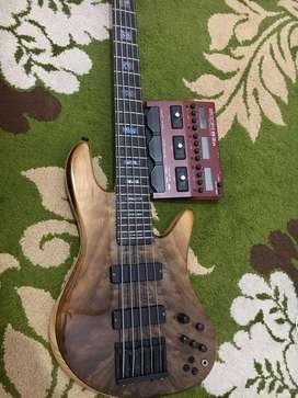 Bass custom high spec