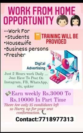 Digital advertising on social media sites