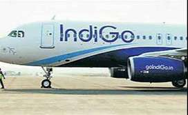 Urgent Requirement Of Staff For Airport  Freshers / Experienced  Male