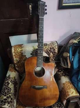Guitar Semi Acoustic