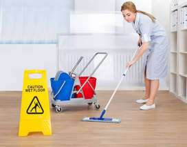 We r looking for urgent female cleaner for home