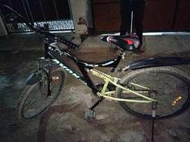 Avon cycle..