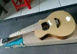 Gitar akustik elektrik Yamaha apx custom