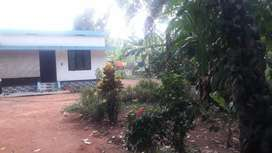 25 cent Plot and house for sale, near vellanchira, chalakudy
