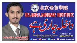 Chinese Language courses and home tuitiona