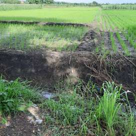 Tanah plot industri di Raya Kemlagi