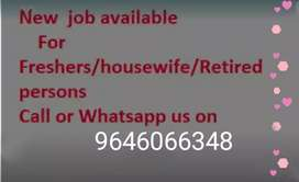 New job for fresher /housewife /retired person.data entry job