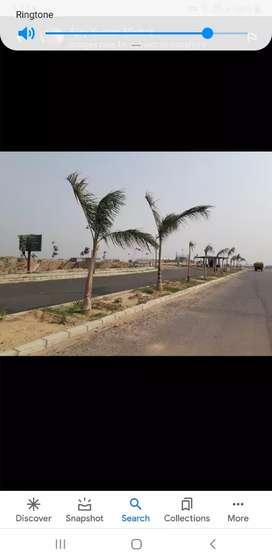 Gomti Nagar Me Shalimar one world se 1 km par develop plots only 4000