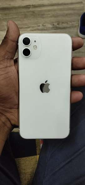 Iphone 11. With 8 months warranty