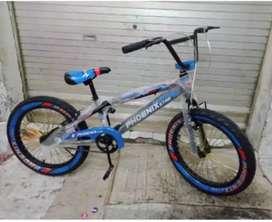 Sepeda bmx 20 phoenix ban besar