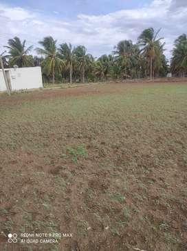 Agri land sale