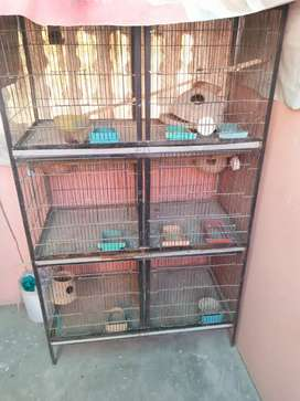 6 portion cage good condition