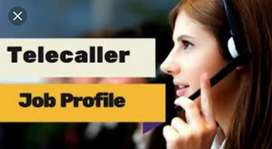 Urgent requirement in sachiwalaya For bpo tellecaller