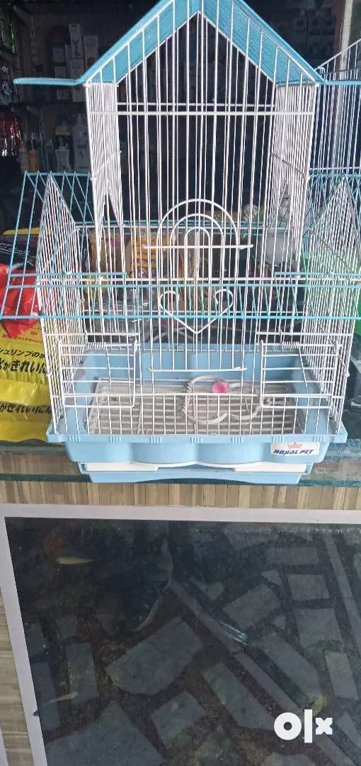Buy bird cages Chinese and handmade 0