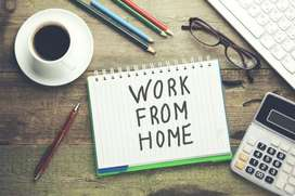 Work get fixed salary every week in home based offline typing work
