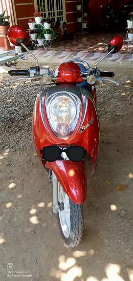 Scoopy 2012 pajak hidup