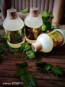 Herbal penyembuh luka cucumber jelly gamat gold g 320ml alami herbal