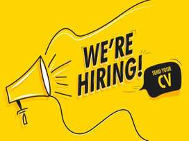 We are looking for an SEO Expert and Analyst