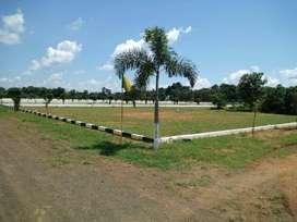 DTCP Plots 4 Kms to Morampudi,  Bhoopalapatnam,  Rajahmundry
