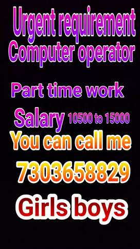 Computer operator data entry home based part time work