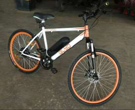 Electric Bicycle with Portable Battery