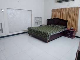 furnished house Daily basis  for rent