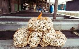 Karang Jahe Media Koi Jaring Nelayan  Oyster Gombong Japmate Busa