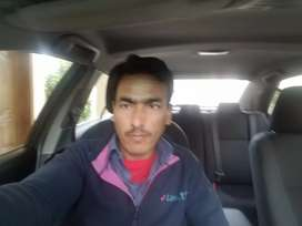 I AM A DRIVER  AND LOOKING FOR A JOB