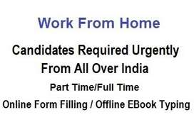 Form Filling & EBook Typing Work From Home Projects