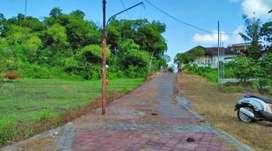 Tanah Murah Di Pererenan Canggu Bali (ERTCGU165)