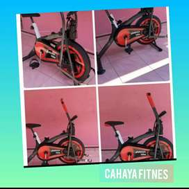 alat fitnes sepeda statis platinum bike anti karat promo