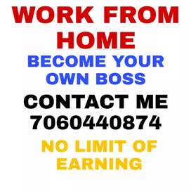 WORK FROM HOME WITH PHONE